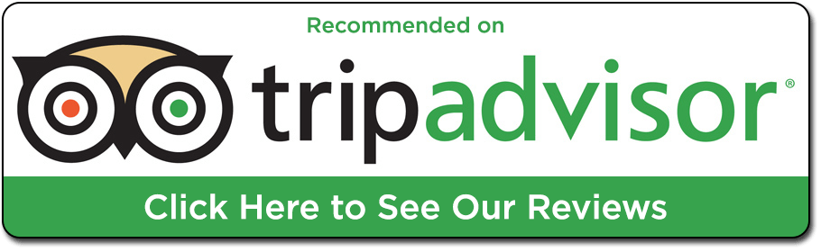 West Bank Tour - Recommended on Trip Advisor